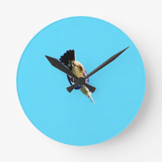 KINGFISHER IN FLIGHT QUEENSLAND AUSTRALIA WALL CLOCKS