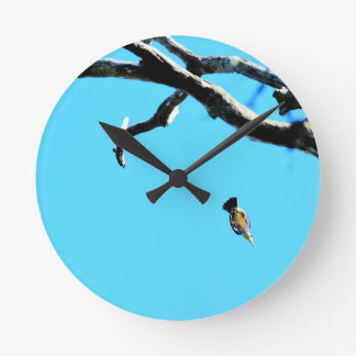 KINGFISHER IN FLIGHT QUEENSLAND AUSTRALIA WALLCLOCK