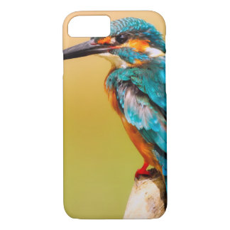 Kingfisher iPhone 8/7 Case