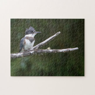 kingfisher jigsaw puzzle