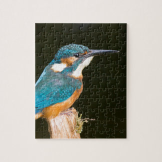 Kingfisher on a stick jigsaw puzzle