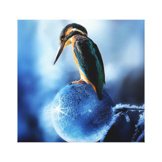 Kingfisher On Frozen Bubble Canvas Print