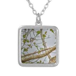 KINGFISHER QUEENSLAND AUSRALIA ART EFFECTS SILVER PLATED NECKLACE