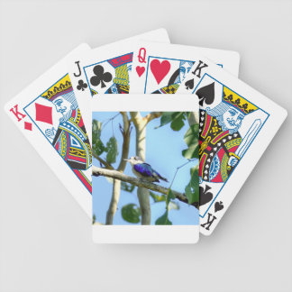 KINGFISHER  QUEENSLAND AUSTRALIA BICYCLE PLAYING CARDS