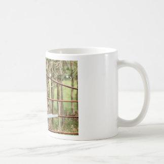 KINGFISHER QUEENSLAND AUSTRALIA COFFEE MUG