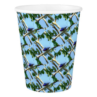 KINGFISHER  QUEENSLAND AUSTRALIA PAPER CUP