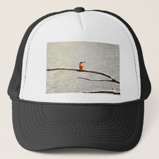 KINGFISHER QUEENSLAND AUSTRALIA TRUCKER HAT