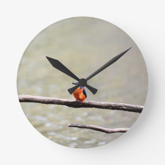 KINGFISHER QUEENSLAND AUSTRALIA WALLCLOCKS