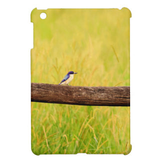 KINGFISHER RURAL QUEENSLAND AUSTRALIA CASE FOR THE iPad MINI