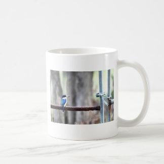 KINGFISHER RURAL QUEENSLAND AUSTRALIA COFFEE MUG