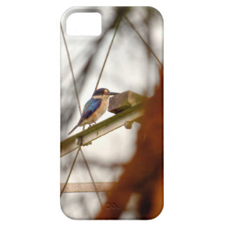 KINGFISHER RURAL QUEENSLAND AUSTRALIA iPhone 5 CASE