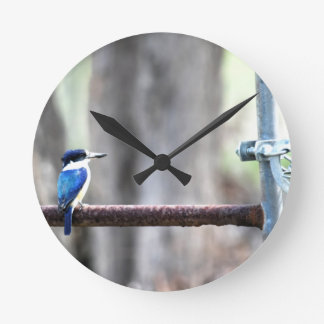 KINGFISHER RURAL QUEENSLAND AUSTRALIA WALLCLOCKS