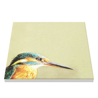 KINGFISHER - Stop And Stare Canvas Prints