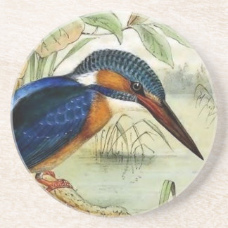 Kingfisher Vintage Bird Illustration Coasters