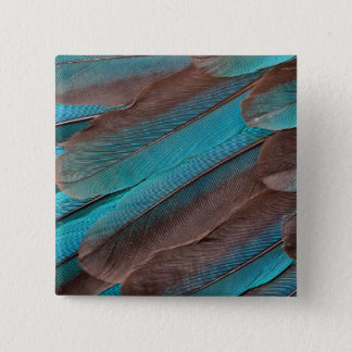 Kingfisher Wing Feathers 15 Cm Square Badge