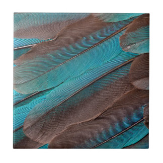 Kingfisher Wing Feathers Small Square Tile