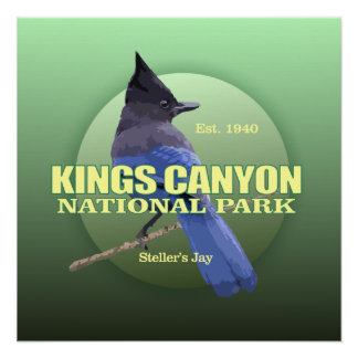 Kings Canyon NP (Stellers Jay) WT Poster