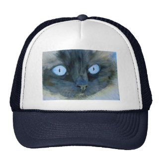 Kismet the Ragdoll Cat Cap