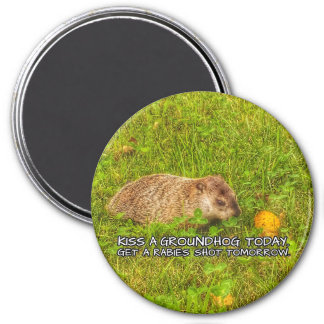 Kiss a groundhog today. Get a rabies shot magnet