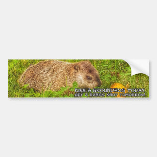 Kiss a groundhog today. Get a rabies shot sticker