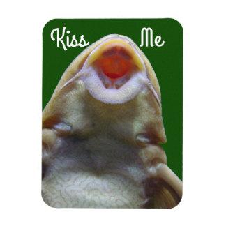 Kiss Me Fish Rectangular Photo Magnet