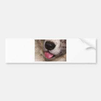 Kisses Bumper Sticker
