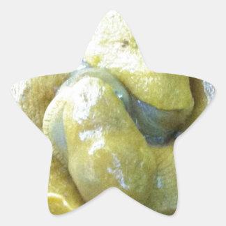 kissing banana slugs star sticker