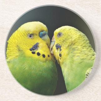 Kissing Budgie Parrot Bird Coaster