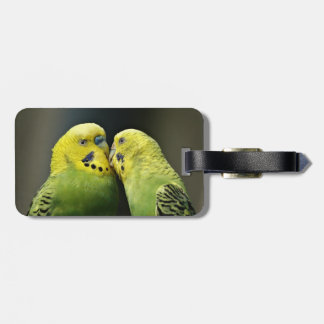Kissing Budgie Parrot Bird Luggage Tag