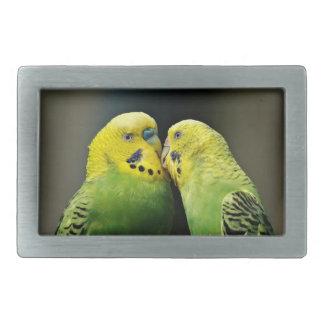 Kissing Budgie Parrot Bird Rectangular Belt Buckles
