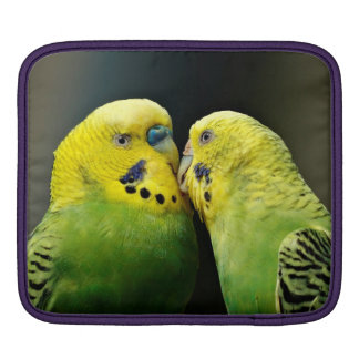 Kissing Budgie Parrot Bird Sleeves For iPads