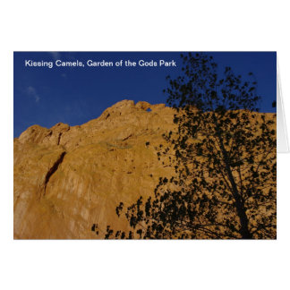 Kissing Camels Card
