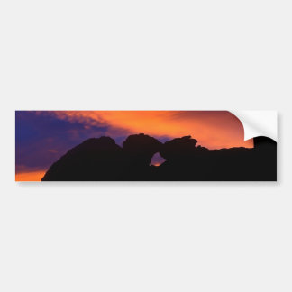 Kissing Camels Silhouette Bumper Sticker