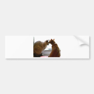 Kissing Cats Love and Friendship Items Bumper Sticker