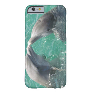 Kissing Dolphins Barely There iPhone 6 Case