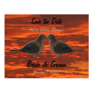 Kissing Doves Save the Date Postcard