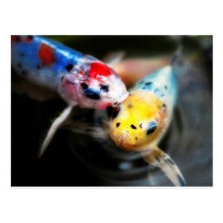Kissing fish postcard