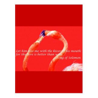 Kissing Flamingos Postcard