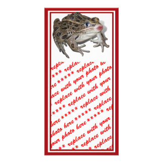 Kissing Frog (Add Your Text) Custom Photo Card