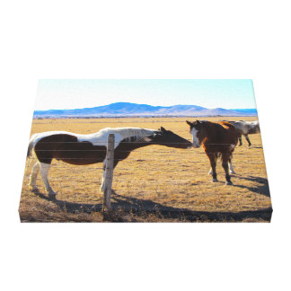 Kissing Horses Wrapped Canvas