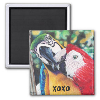 kissing macaws magnet