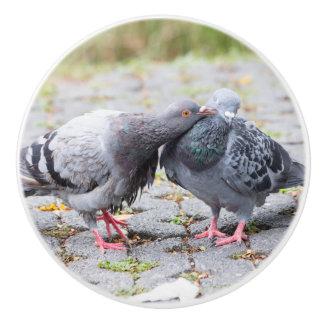 Kissing pigeons ceramic knob