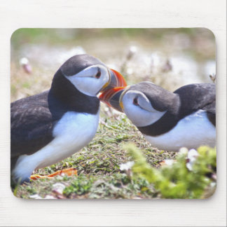 Kissing Puffins Mousemat