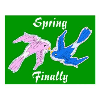 Kissing Swallows Spring Postcard