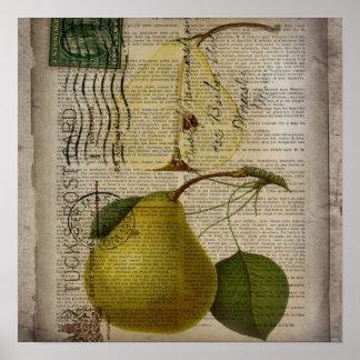 kitchen decor vintage botanical print pears