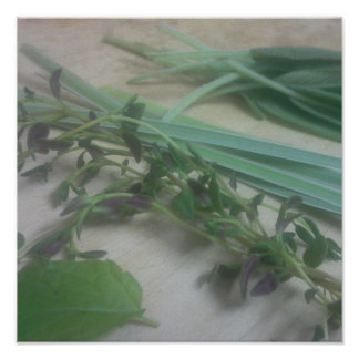 Kitchen Herbs Photography Poster