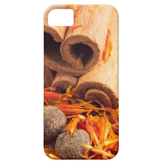 Kitchen spices and herbs close-up case for the iPhone 5