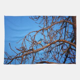 Kitchen Towel Western Bluebird Wildlife
