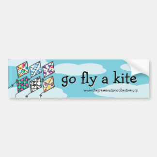 Kite Festival 2011 Go Fly a Kite Bumper Sticker