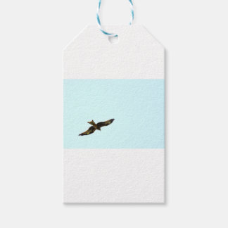 KITE HAWK QUUENSLAND AUSTRALIA ART EFFECTS GIFT TAGS